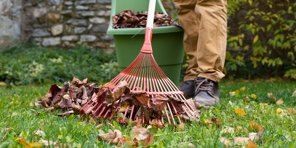 fall clean up leaves wallace Wallace's Garden Center