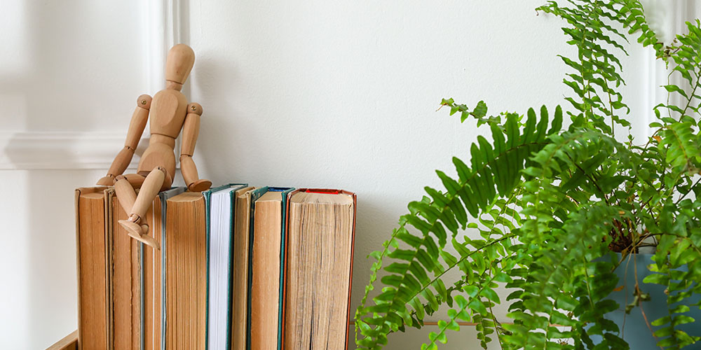 fern plant beside books and mannequin figurine indoors